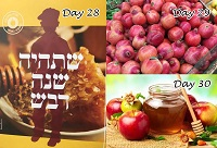 Day #28, 29 & 30 of a 30 day series of Torah thoughts by Rabbi Elan Adler.